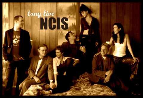 Tiva fondo de pantalla probably with a concierto and a brasserie titled NCIS♥