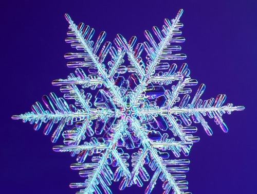 real snowflakes background - photo #1
