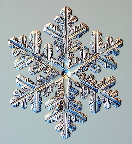 Real Snowflakes!