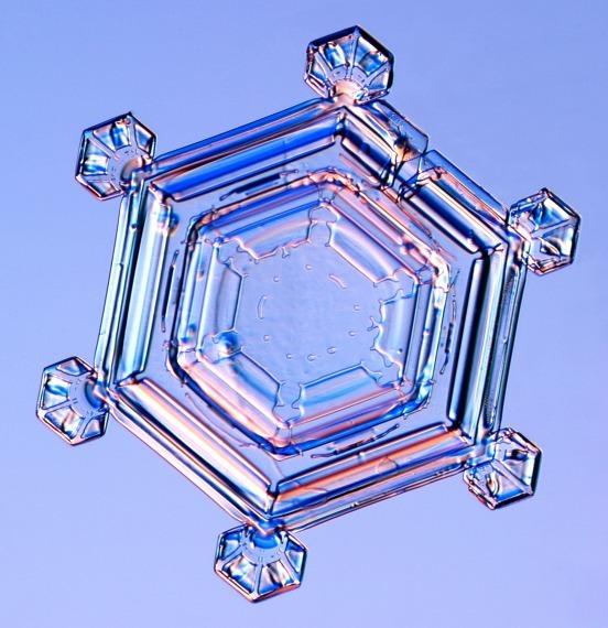 Real Snowflakes!