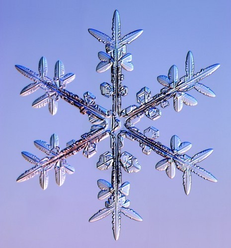 real snowflakes background - photo #42