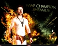 Sheamus - wwe wallpaper