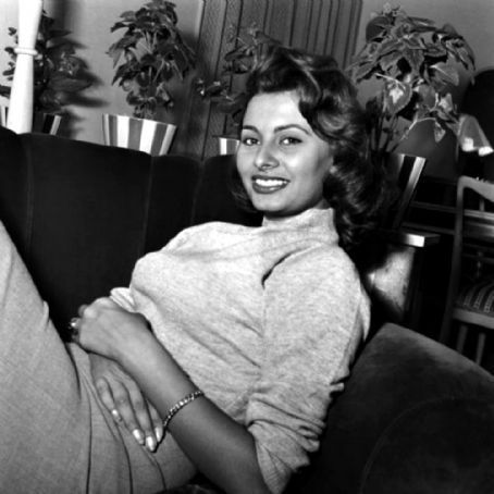 Sophia Loren wallpaper probably with a drawing room, a living room, and a bistro entitled Sophia Loren