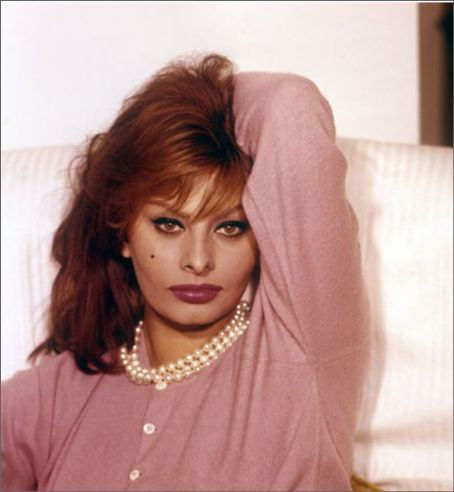 索菲亚·罗兰 壁纸 with a portrait titled Sophia Loren