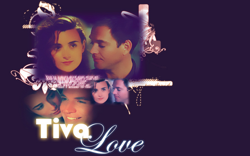 Tiva fondo de pantalla called Tony & Ziva