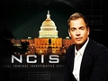 ncis - Tony wallpaper