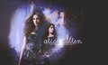 Twilight Wallpapers - twilight-series photo