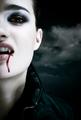 Vampires - vampires photo