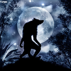 Wolves and Werewolfs wallpaper titled Werewolf
