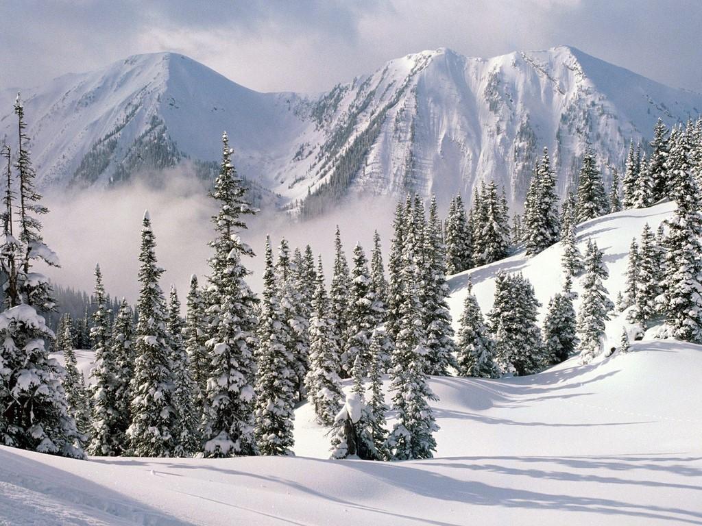 Nature's Seasons fondo de pantalla with a ski slope, a piste, and a ski