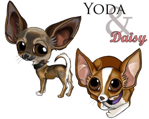Yoda & margherita