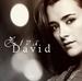 Ziva David