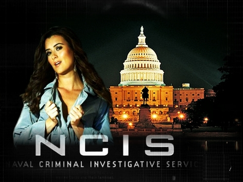 NCIS پیپر وال probably with a business district titled Ziva