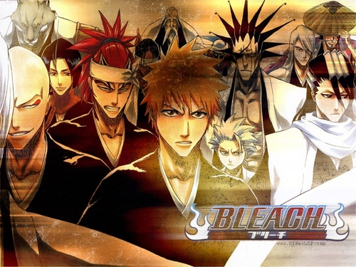 animé Bleach fond d'écran titled bleach