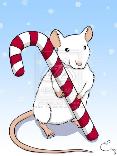 navidad dulces canes♥