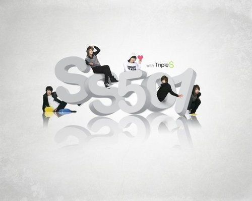 SS501 wallpaper called cool