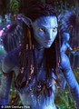 neytiri at night - james-camerons-avatar photo