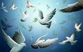 peace - world-peace wallpaper