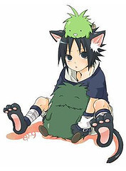 sasuke kitty cat