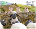 shaun.n.friends - shaun-the-sheep photo