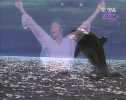 "michael jackson wallpaper entitled ""Free Willy"""