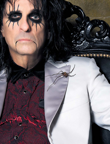 Alice Cooper wallpaper titled Alice Cooper
