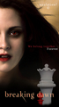 Bella ~ Breaking Dawn - twilight-series photo