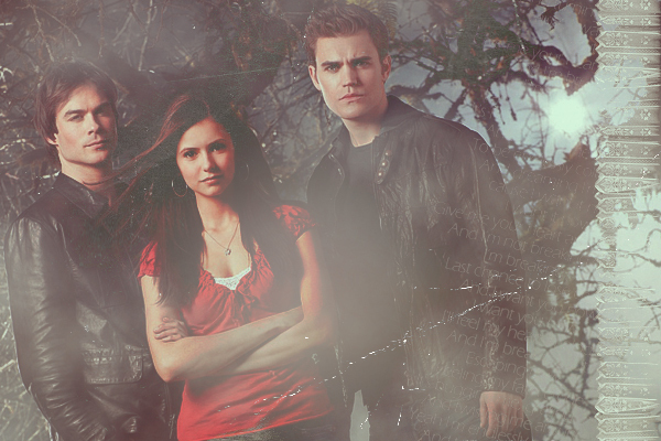http://images2.fanpop.com/image/photos/9500000/D-E-S-the-vampire-diaries-9581275-600-400.jpg