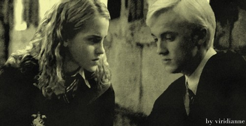 Dramione wallpaper possibly containing a portrait entitled Dramione HBP