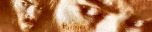 Eomer Banner
