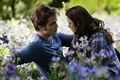 First picture of Eclipse - twilight-series photo