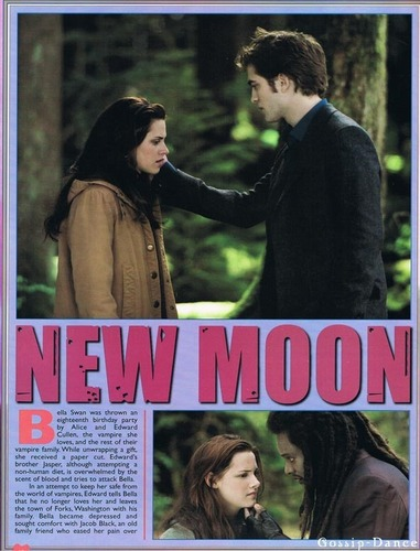 New Moon Collector Edition