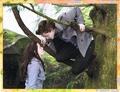 New Moon Collector Edition - twilight-series photo