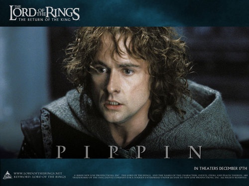 Pippin Took वॉलपेपर probably containing a portrait called Pippin Took