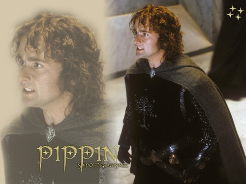 Pippin Took