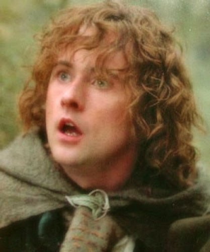 Pippin Took वॉलपेपर possibly with a cloak, a hood, and an overgarment titled Pippin Took