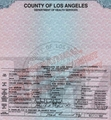 Prince's birth certificate - prince-michael-jackson photo
