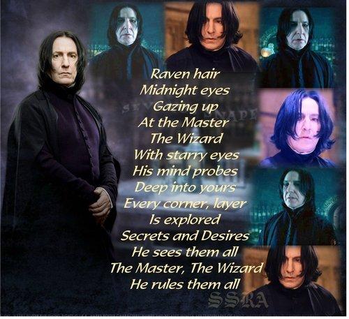 Severus-Master Wizard