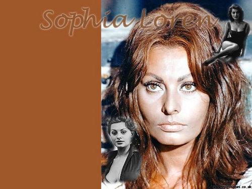 Sophia Lauren