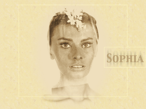 Sophia Loren wallpaper probably with a bouquet and a portrait called Sophia Loren