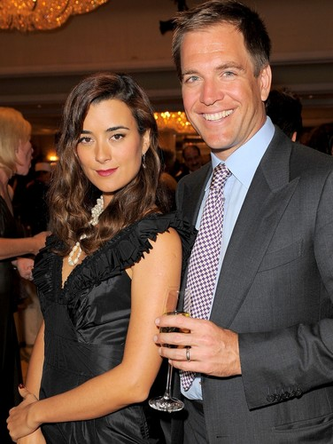 Tiva fondo de pantalla possibly with a business suit entitled TIVA