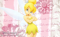Tinkerbell - disney wallpaper