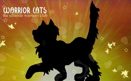 Warrior Cat Club