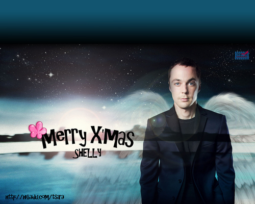 Sheldon Cooper wallpaper possibly containing a well dressed person and a portrait called happy holiday