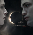 ~ ECLIPSE ~ - twilight-series photo