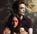 ♥ ღ Edward & Bella Twilight ღ ♥ - twilight-series photo