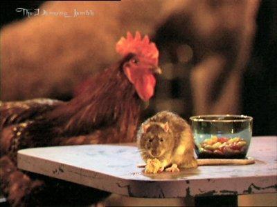Animal Pragmatism;)