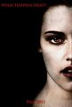 Bella Cullen ~ Breaking Dawn - twilight-series photo