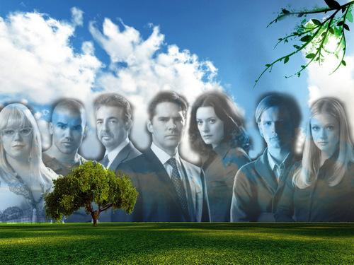 Criminal Minds Team