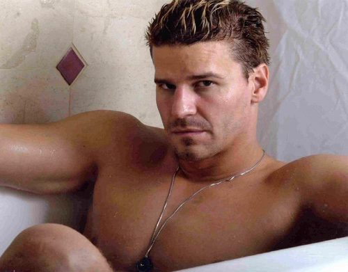 David Boreanaz AS Demitri Belikov